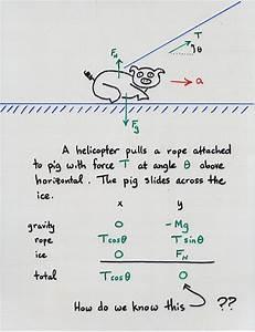 Freebody Diagrams And Newton U0026 39 S Third Law