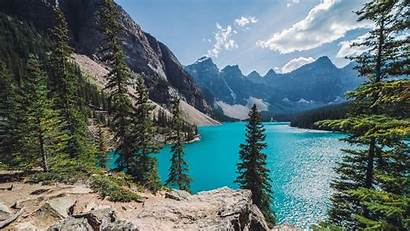 Lake Forest Mountain Canada Landscape Nature Water
