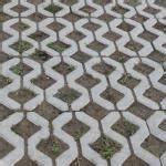 Tröpfchenbewässerung Selber Bauen : unkraut und moos aus pflasterfugen entfernen garten pflanzen ~ Lizthompson.info Haus und Dekorationen