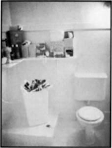 Nparadoxa for Judy chicago menstruation bathroom