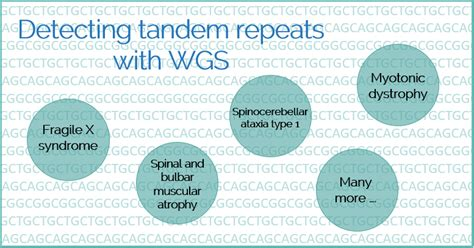 detecting short tandem repeats strs  wgs variantyx