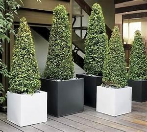 Pot Pour Balcon : jardini re balcon 50 photos pour choisir la jardini re id ale ~ Teatrodelosmanantiales.com Idées de Décoration