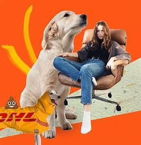Ich Suche Einen Großen Hund : scalamaris welt er und ich gegen den schweinehund ~ Jslefanu.com Haus und Dekorationen