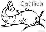 Catfish Coloring Pages Drawing Floating Getdrawings sketch template