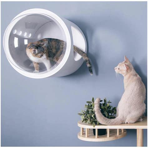 spaceship gamma ultra modern cat bed  wall mounted bed
