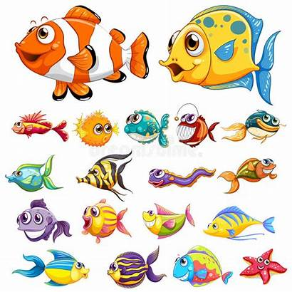 Fish Different Types Clipart Vector Illustration Sea