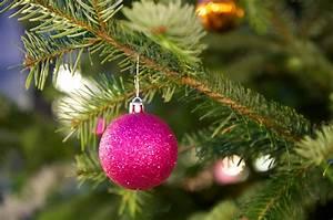 Weihnachtsbaum Mit Rosa Kugeln : tannenbaum mit kugel tannenbaum mit kugel maik meid ~ Orissabook.com Haus und Dekorationen