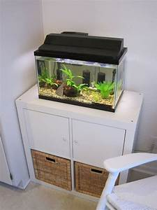 Aquarium Unterschrank Ikea : ikea aquarium schrank ~ Watch28wear.com Haus und Dekorationen