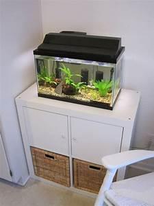 Aquarium Unterschrank Ikea : ikea aquarium schrank ~ A.2002-acura-tl-radio.info Haus und Dekorationen