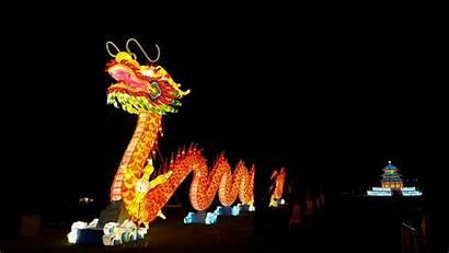 Dragon Chinese Lantern Festival Pixabay Decoration