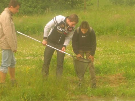 Freundeskreis Botanischer Garten Aachen E V freilandlabor wasser natur und umwelt freundeskreis