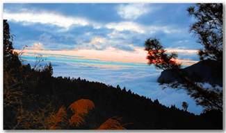 Alishan National Scenic Area Taiwan