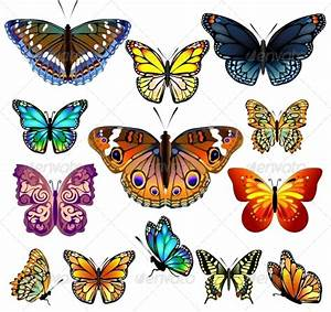 Set of Colorful Realistic Isolated Butterflies. by Sam2211 ...