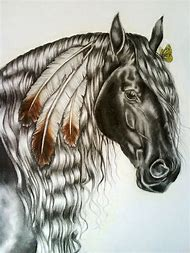 American Indian Horse Drawings