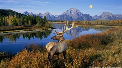 996 outdoor pack interesting facts about banff national park just facts