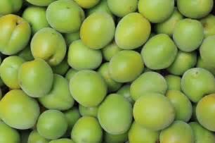 Japanese Apricot Fruit