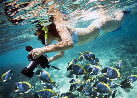 snorkeling florida keys spots diving charter islamorada cheeca rocks yacht activities based water