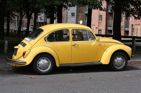 punch buggy car yellow 197 best no punch back images on pinterest vw beetles