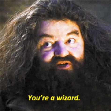 You Re A Wizard Harry Meme - you re a wizard tumblr