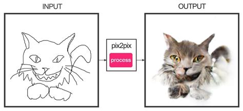 Draw A Cat And See It Transform In This Imagetoimage