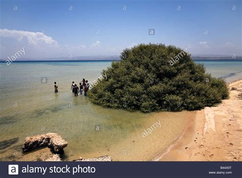 Massawa Eritrea Beach Pictures to Pin on Pinterest - PinsDaddy