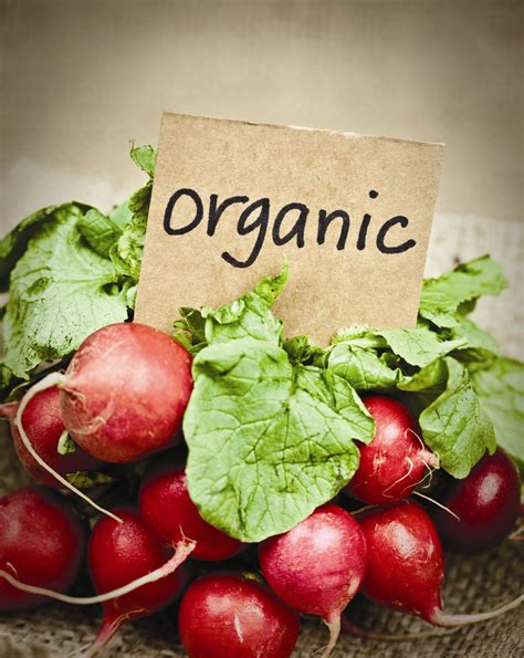 organic grub going organic what you need to know agriculture and food
