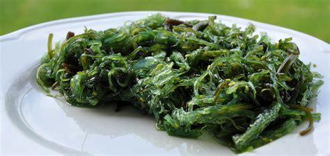 cuisiner des algues comment cuisiner les algues luximer le de la