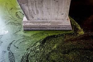 Cité Radieuse De Rezé : cite radieuse de reze m3 4694 frederic betsch ~ Voncanada.com Idées de Décoration
