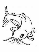 Coloring Pages Catfish Fish Printable Minecraft sketch template
