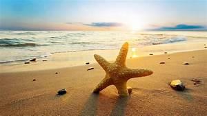 Bilder Meer Strand : die 75 besten sonne hintergrundbilder ~ Eleganceandgraceweddings.com Haus und Dekorationen