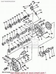 Wiring Diagram For Yamaha Moto 4 250