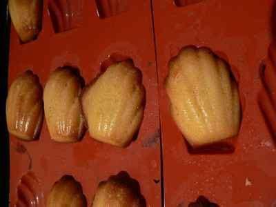 recette madeleines au miel simples  bonnes