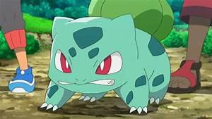 Ash's Bulbasaur   Pokémon Wiki   FANDOM powered by Wikia