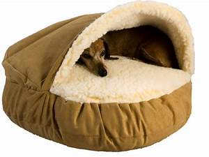 which brands has the best dog bed for maltese With dog bed brands