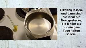 Hortensien Haltbar Machen : diy rosen l nger haltbar machen youtube ~ A.2002-acura-tl-radio.info Haus und Dekorationen