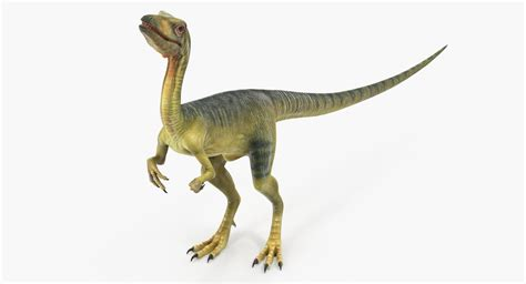 Dinosaur Compsognathus Worried Pose 3d Model