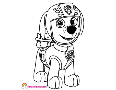 Coloring Zuma by Paw Patrol Zuma Coloring Pages At Getcolorings Free
