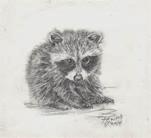 Cute Baby Raccoon Drawings