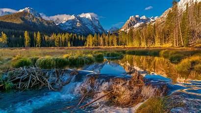 Dam Beaver Usa Bing September