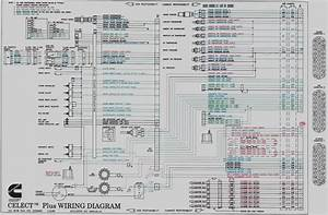 Mins M11 Ecm Wiring Diagram