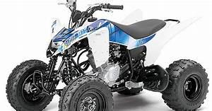 Quad 125 Yamaha : 2013 yamaha raptor 125 atv pictures specifications ~ Nature-et-papiers.com Idées de Décoration