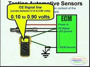 O2 Sensor  U0026 Wiring Diagrams