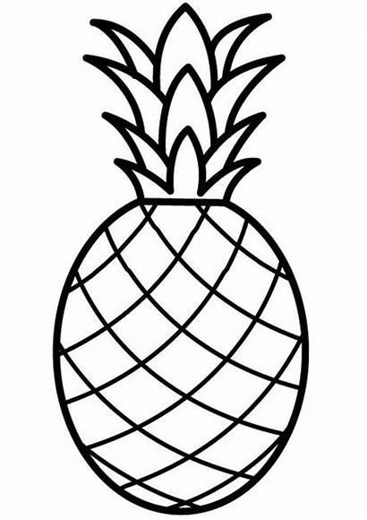 Buah Nanas Gambar Ananas Mewarnai Abacaxi Colorir