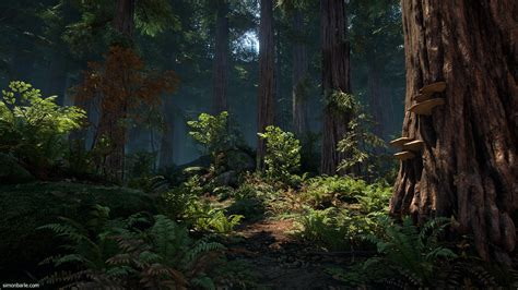 redwood forest ue polycount