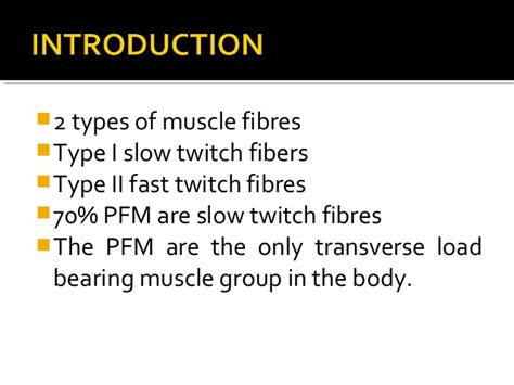 pelvic floor dyssynergia types pelvic floor