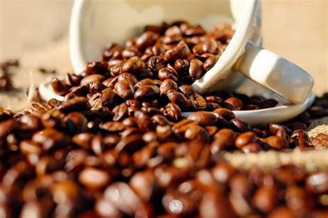 brown cocoa  stock photo