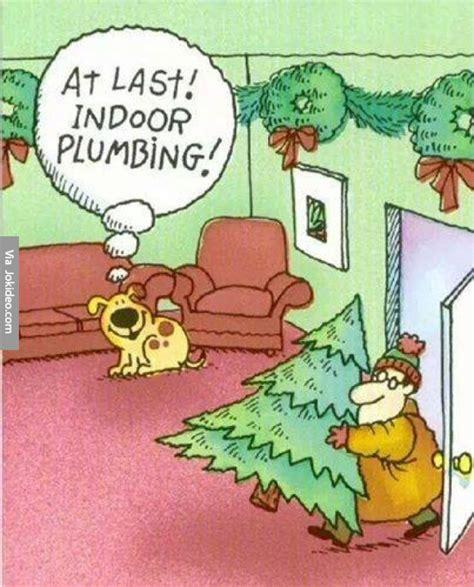 Adult Christmas Memes - funny dog christmas cartoon