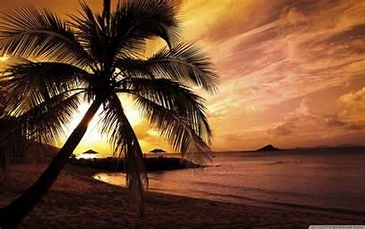 Sunset Tropical Beach Desktop Wallpapers Background Beaches