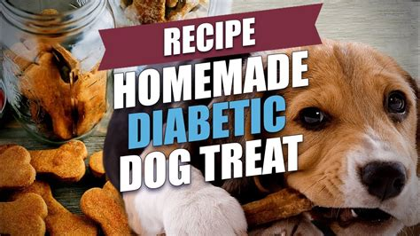 Diabetic diets for dogs that are homemade are created in two different ways: Homemade Diabetic Dog Treat Recipe - YouTube