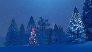 Decorated Christmas Tree Among Snowy Fir Forest At Night ...